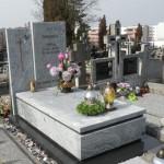 Pomnik Wiscount White